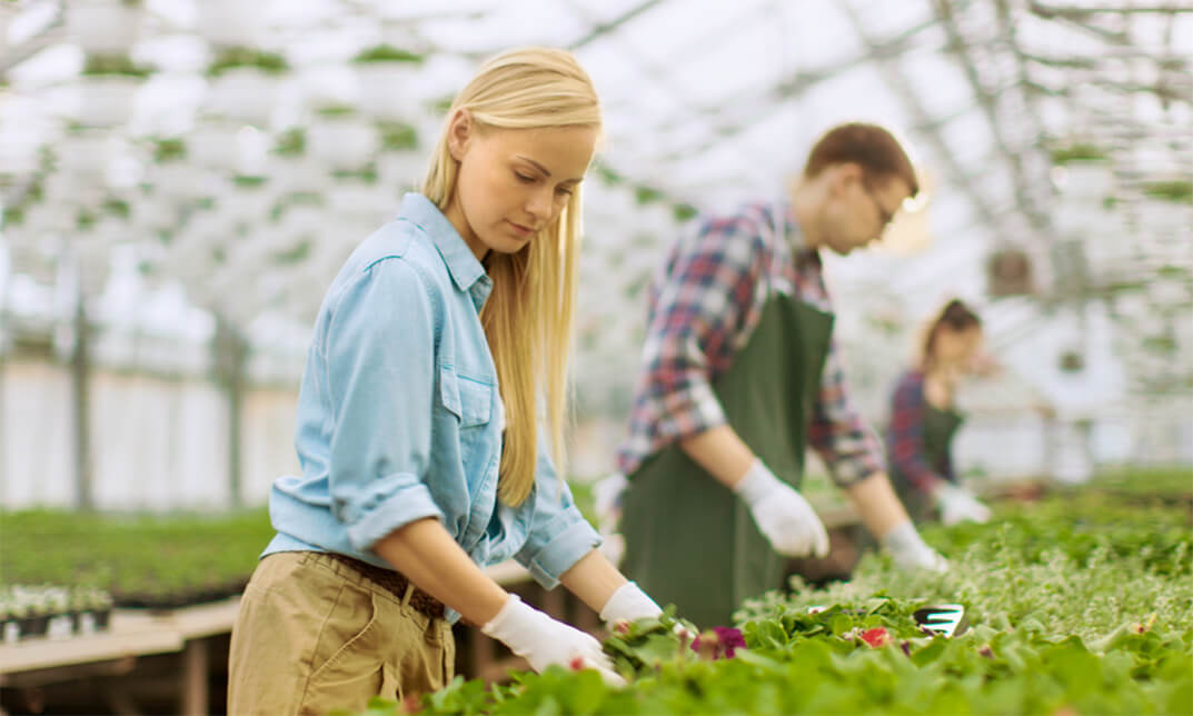 Horticultural Worker Course